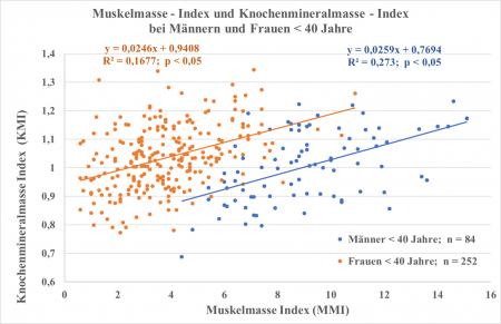 Das Bild soll den Zusammenhang darstellen zwischen dem Muskelmasse-Index und dem Knochenmineralmasse-Index bei Frauen und bei Männern