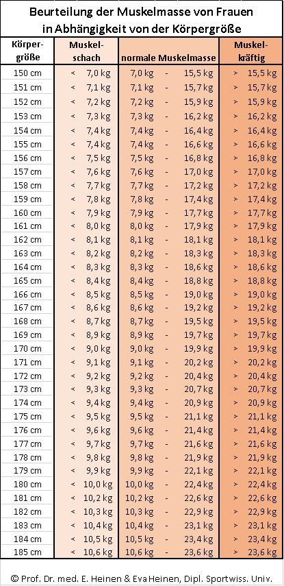 Durchschnittsgröße mann